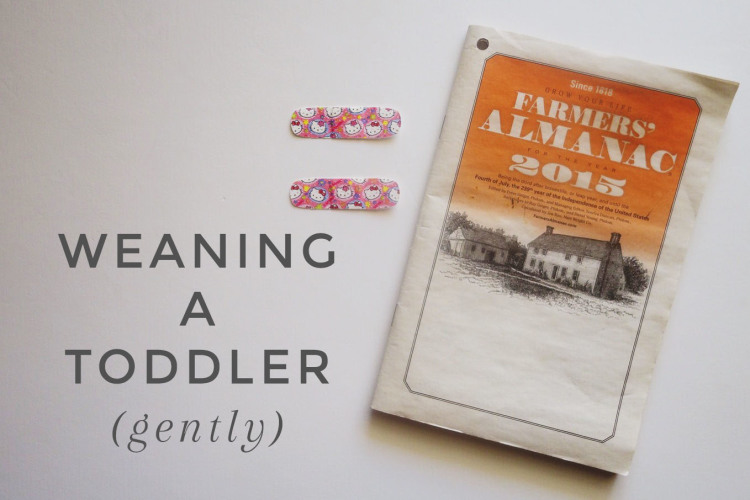 weaning a toddler gently.